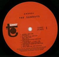 THE SUNRAYS Andrea Vinyl Record LP Tower 1966
